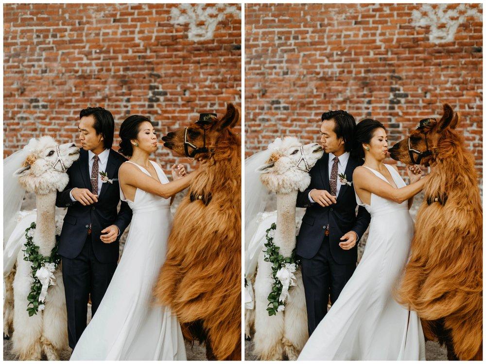 castaway_portland_wedding_jasminejphotography19.JPG