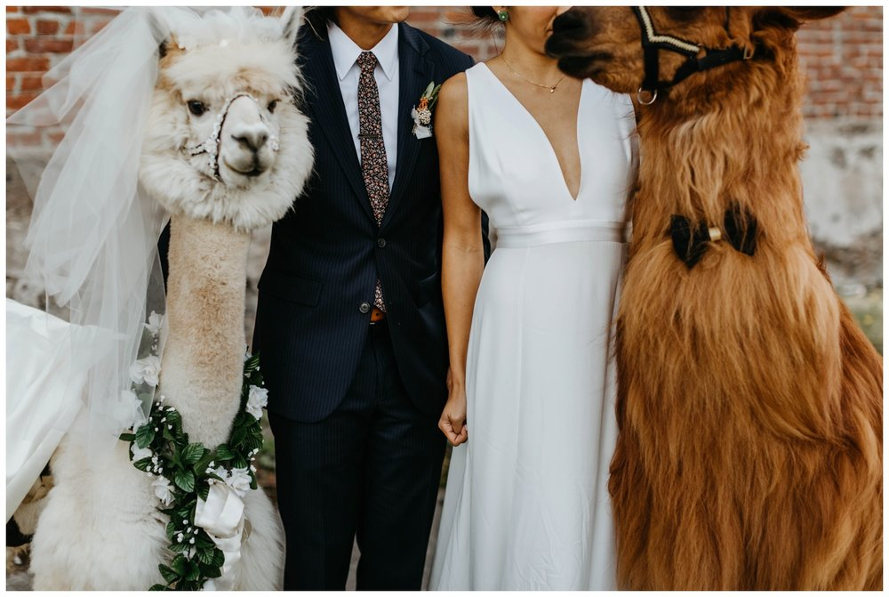 castaway_portland_wedding_jasminejphotography22.JPG