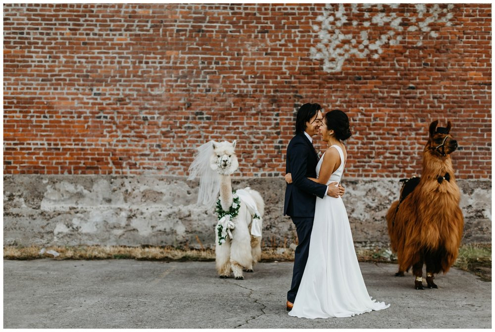 castaway_portland_wedding_jasminejphotography24.JPG
