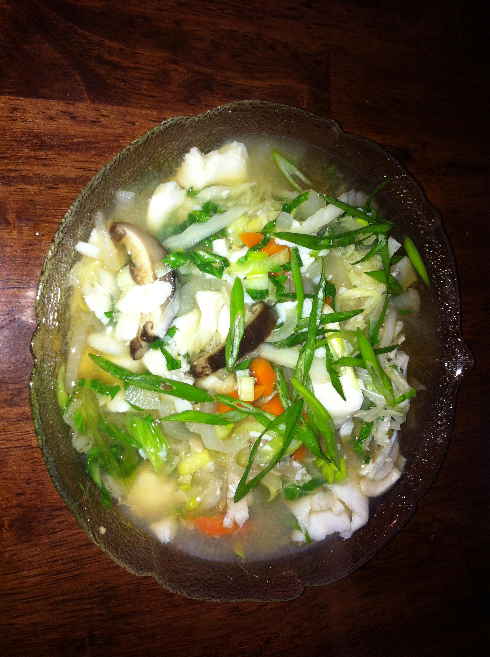 Macro Mild Fish Soup