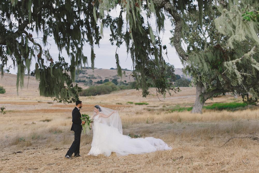 JENNIFER-SKOG-dane-nate-santa-lucia-preserve-wedding-1226.jpg