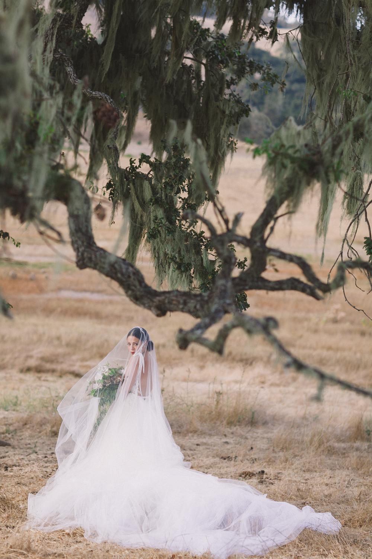 JENNIFER-SKOG-dane-nate-santa-lucia-preserve-wedding-1216.jpg
