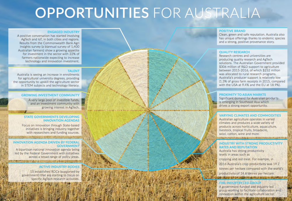 The report, written in collaboration with KPMG and Commonwealth Bank, highlights a number of opportunities for Australia.