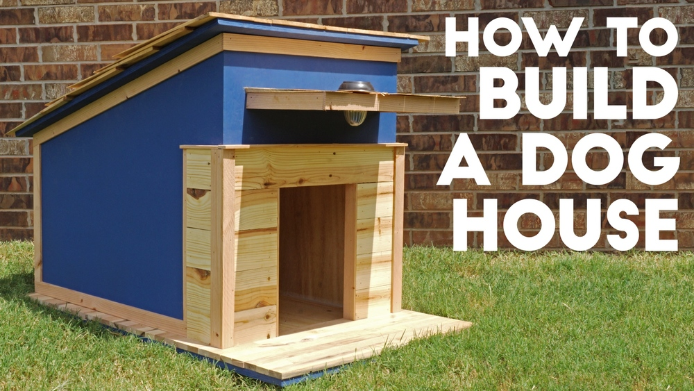 how to build a dog house modern builds. Black Bedroom Furniture Sets. Home Design Ideas