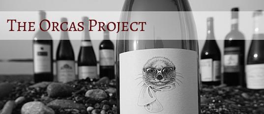 Orcas Project Header.jpg