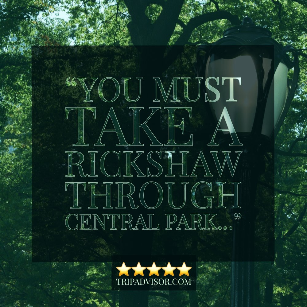 New York City - My Central Park Tours - Review 3.JPG