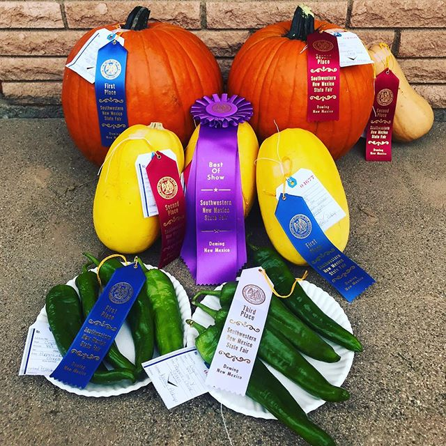 County Fair Award Winning Crops! #farmfresh #countyfair #fairtime #countrylife #farm #farming #farmkids