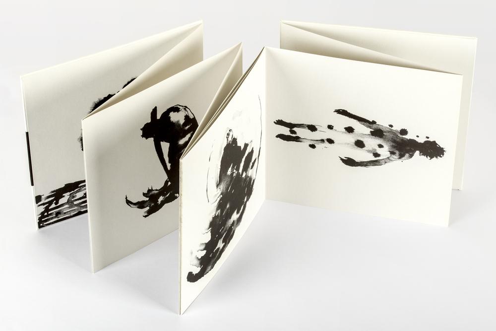 Drawing on Water, Strandline Books, Mat Osmond