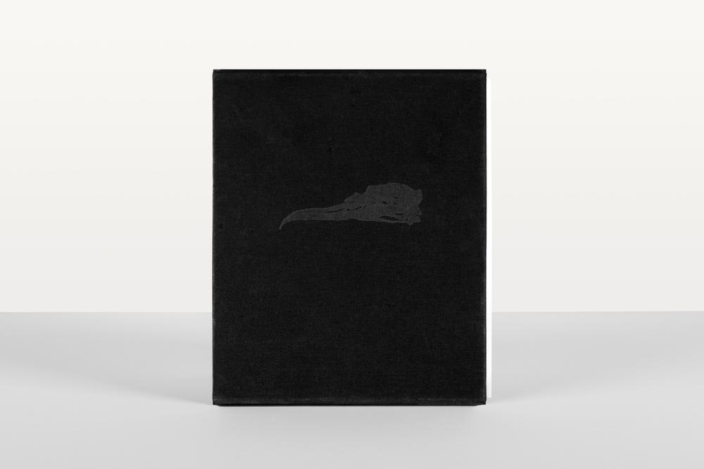 The Bird's Dream, Strandline Books, Mat Osmond