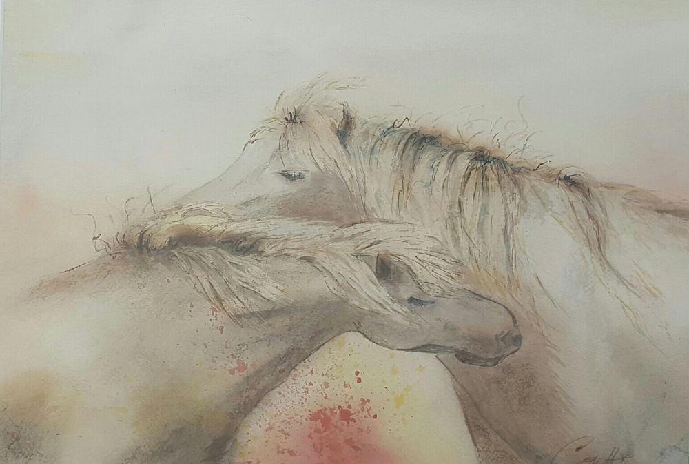 ROMANIA   COSETTE B EKKERS