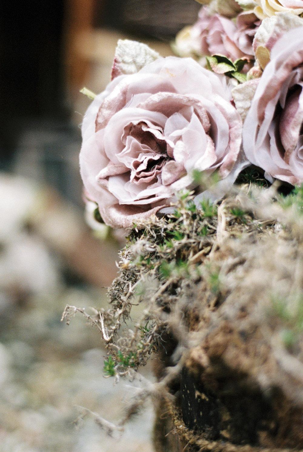 GeorginaHarrisonPhotography-11.jpg