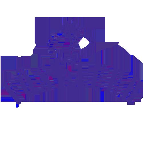 Voeslauer.png