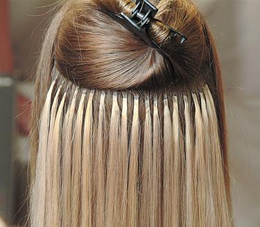 Hills Reed Hair