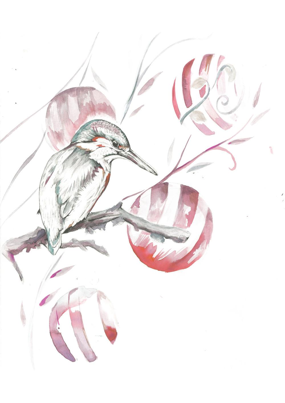 kingfishera4.jpg