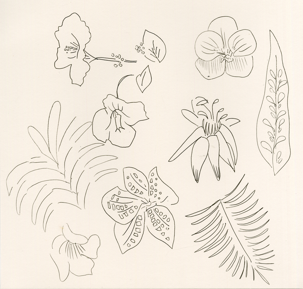 botanical024.jpg