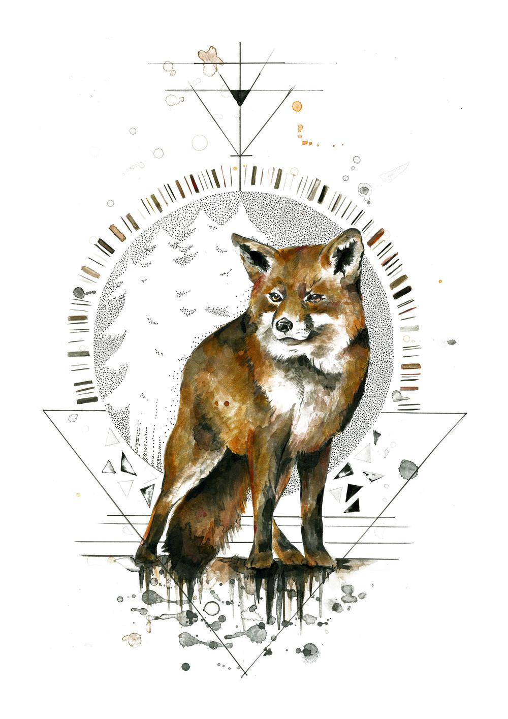 (A4) Fox .jpg