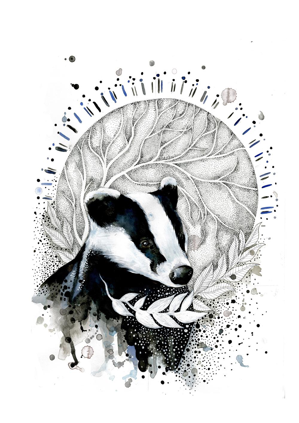 badger a4 .jpg