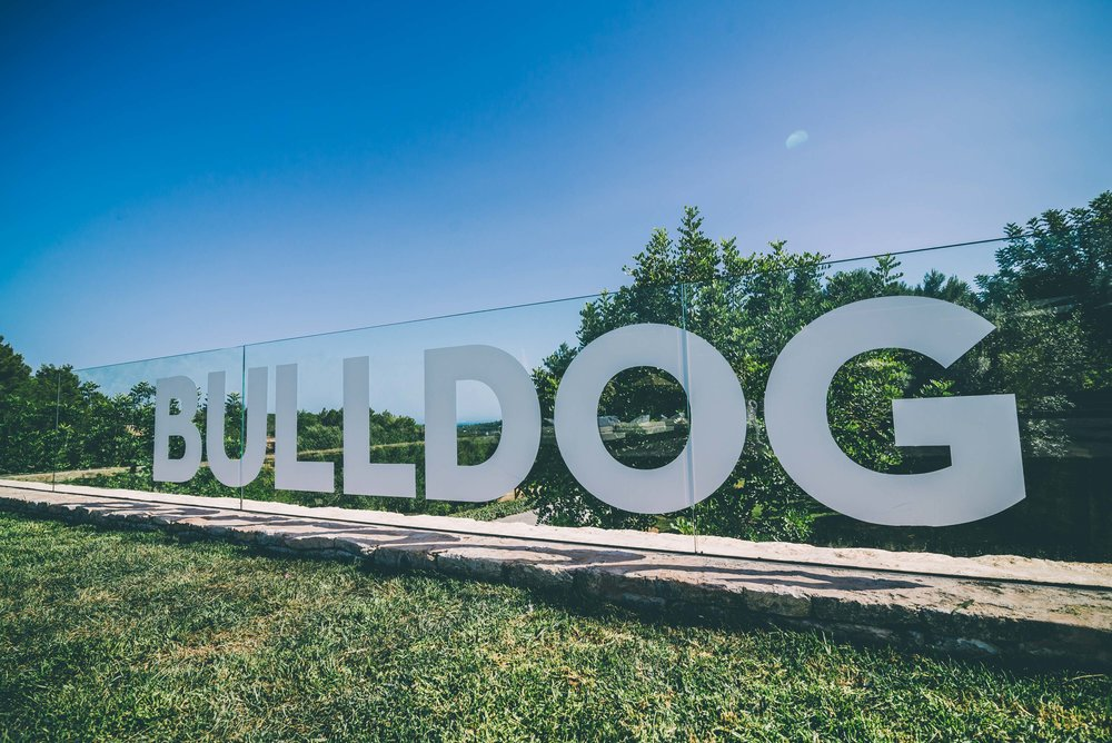 bulldogparty low-50.JPG