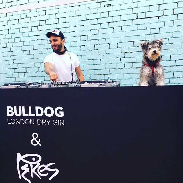 Still running off the #vibes from Sunday's epic #BULLDOGBRUNCH at @neverlandlondon with @djtonyenglish and special guest @harpergoesinsta - Keep your eyes open for the next installment #ComingSoon to London! #doggy #doggydj #bulldogsneedfriendstoo #allofthedogs #dogsofinstagram #dog #dogs #doggo #doggylove