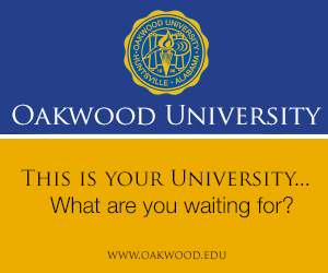 Oakwood Web AD2 300x250_20140520023858.jpg