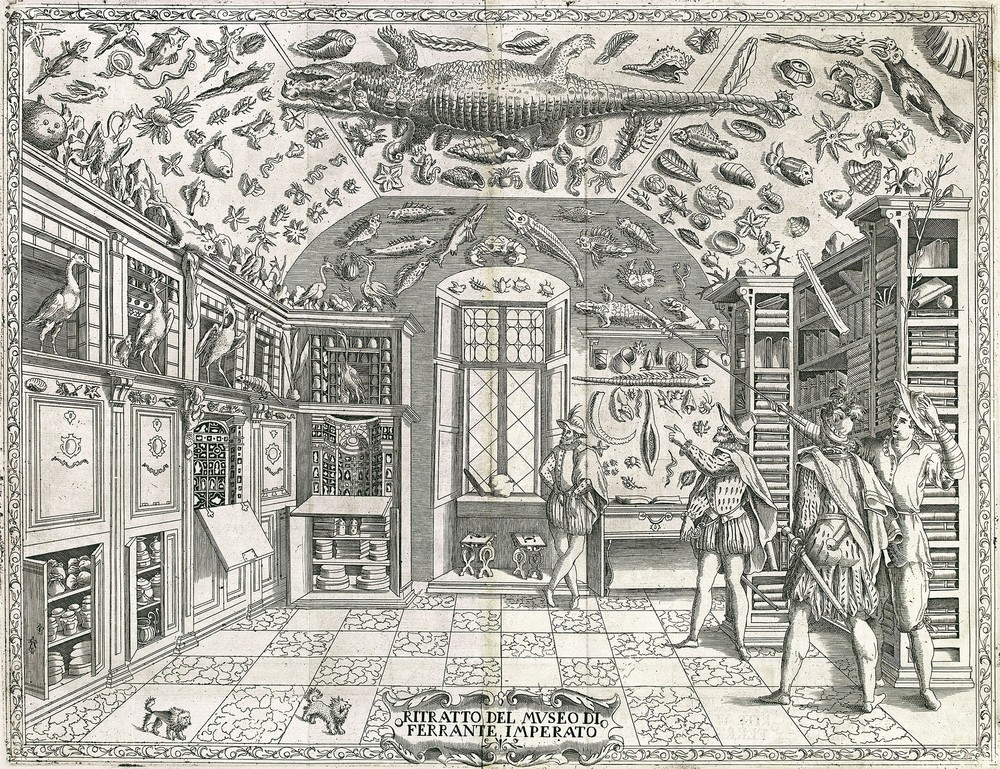 Fold-out engraving from Ferrante Imperato's Dell'Historia Naturale (Naples 1599), the earliest illustration of a natural history cabinet.