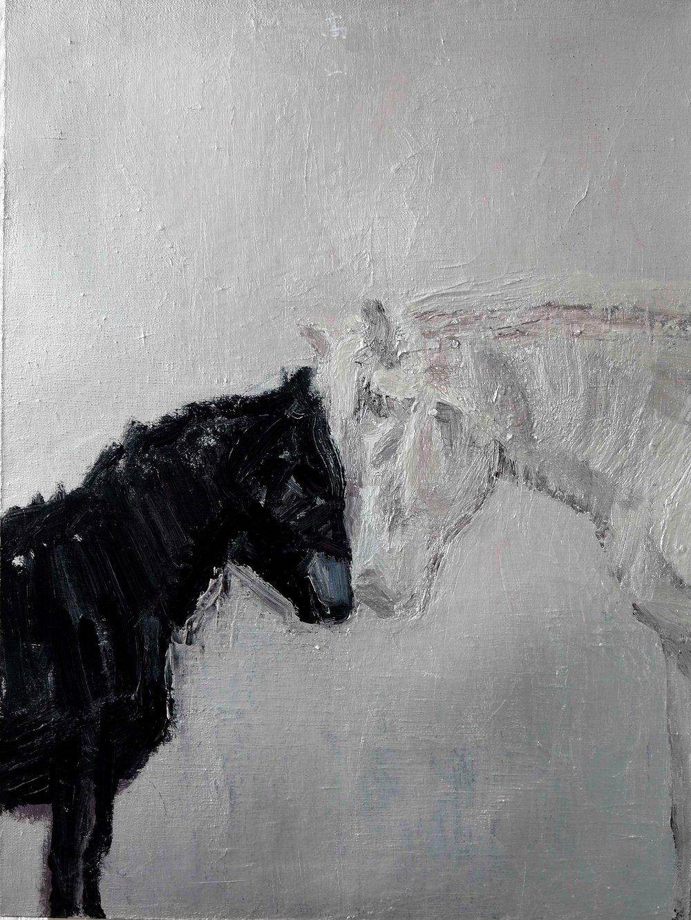 29. The Dreams   61 x 46 cm   Acrylic on Canvas  2014                      梦 布面丙烯.JPG