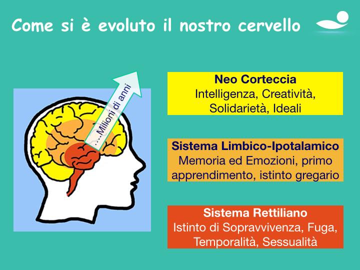 Presentazione su Ipno Aroma Terapia.016.jpg