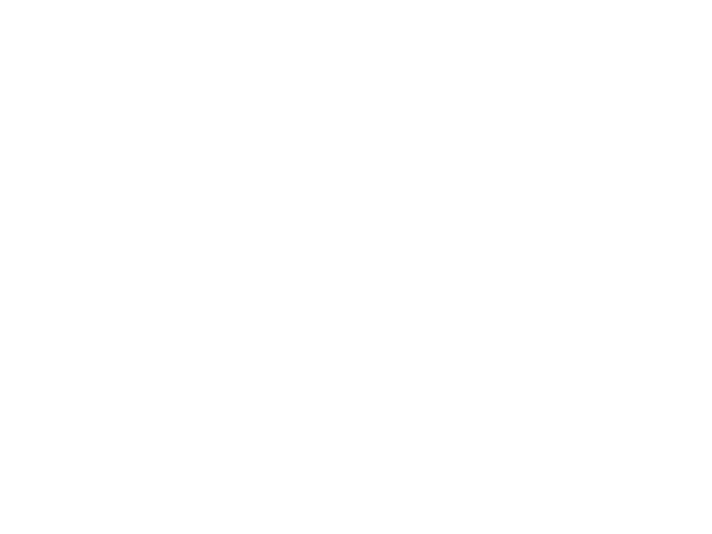 Story of Love Chihuahuas