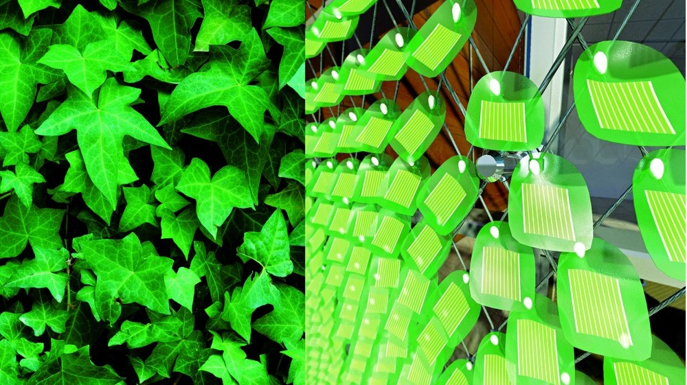 Solar panels design that emulates leaf design