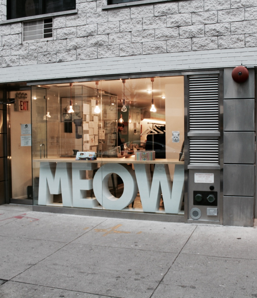 When I read about a new cat cafe in Chinatown I knew I had to go. My friend, who is a total dog person even agreed to come along. Next door they have an adorable kitty cafe where they serve cat-shaped cookies including the most adorable macarons!