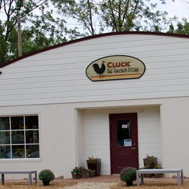 cluck_main.jpg
