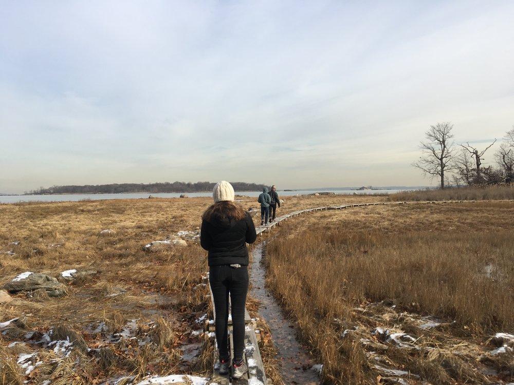Walking across marshland