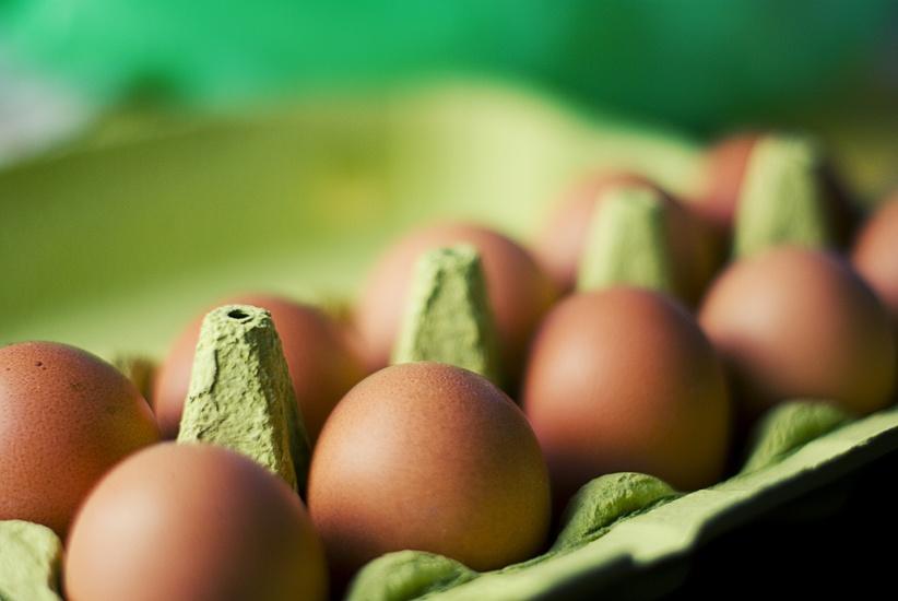 food-eggs-box-large