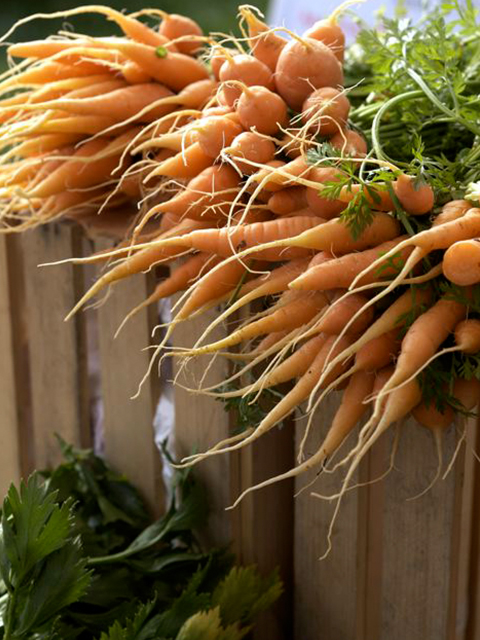ellenarian-carrots.jpg