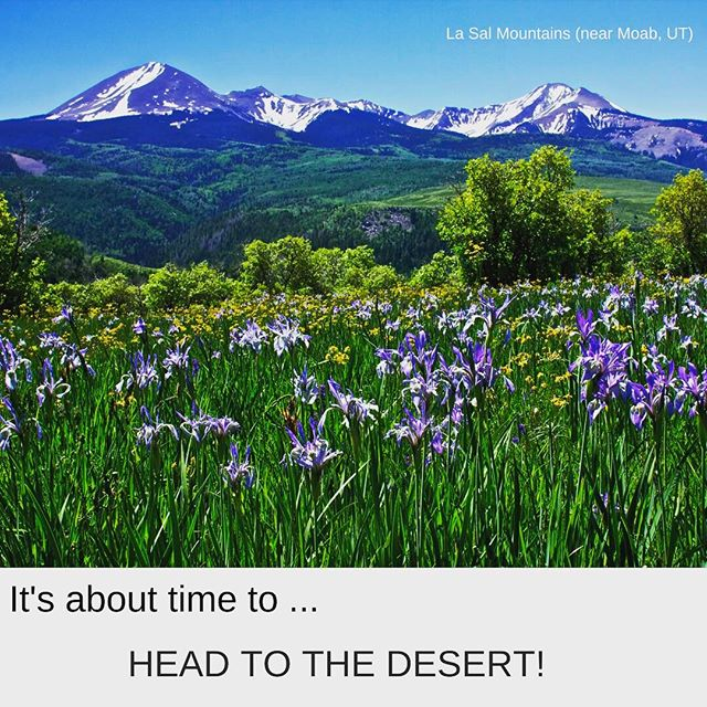 The weather is perfect for a hike in the desert. LET's GO! #Mighty5Tour #desert #travel #luxurytravel #findyourpark