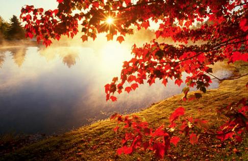 Autumn. christchurchshny.png