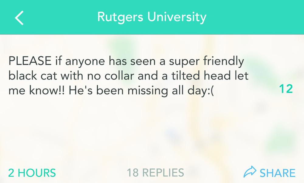 RutgersCat-1.jpg