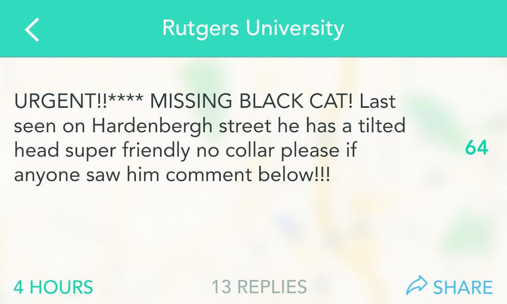 RutgersCat-2.jpg