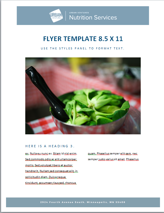 NS_FLYER_85x11.PNG