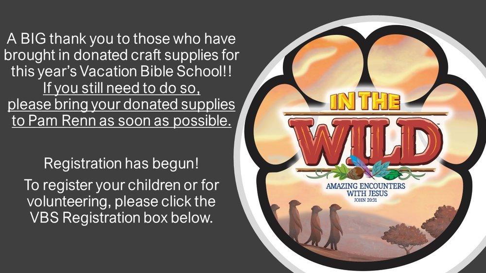 VBS Reg Slide for Into the Wild FOR BOX LINK.jpg
