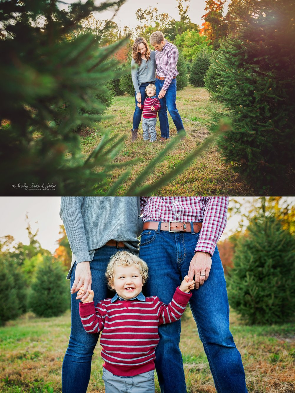 Tree_Farm_Mini_Morristown_NJ_Photographer_0005.jpg