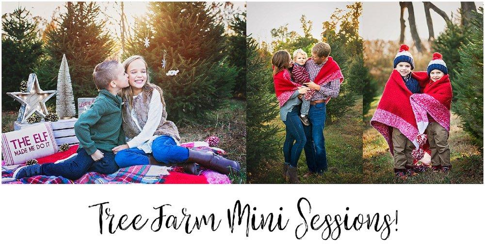 Mendham NJ Tree Farm Sessions_0000.jpg