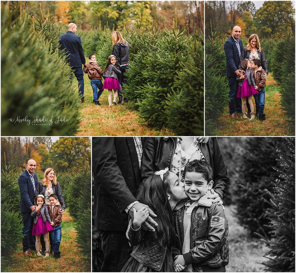 Brianne_Tree_Farm_Minis_Mendham_NJ_0000-1.jpg