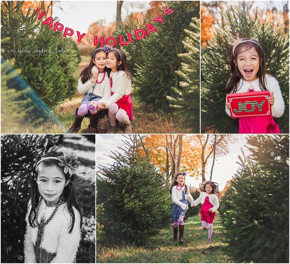 May_Tree_Farm_Minis_Mendham_NJ_0002-1.jpg
