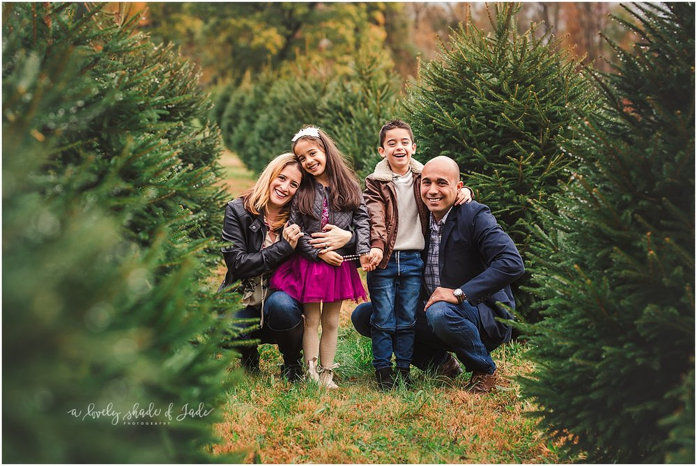 Brianne_Tree_Farm_Minis_Mendham_NJ_0005.jpg