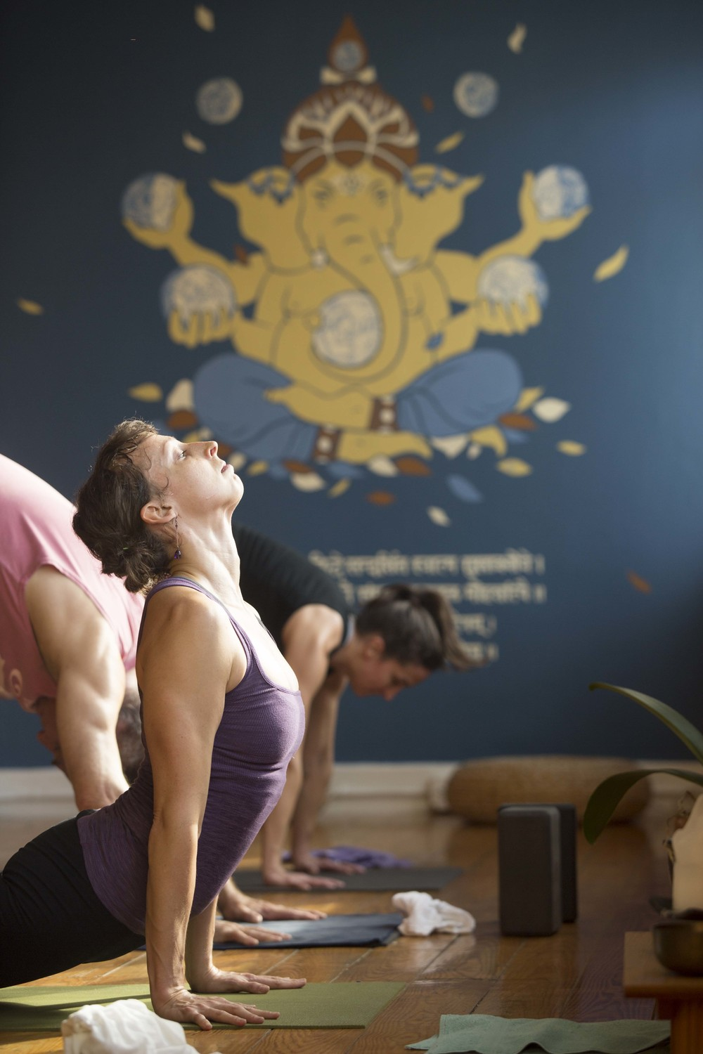 "July 10<br/><a href=""http://www.ashtangayogarichmond.com/workshops-and-events/"">Intro to Mysore...</a>"