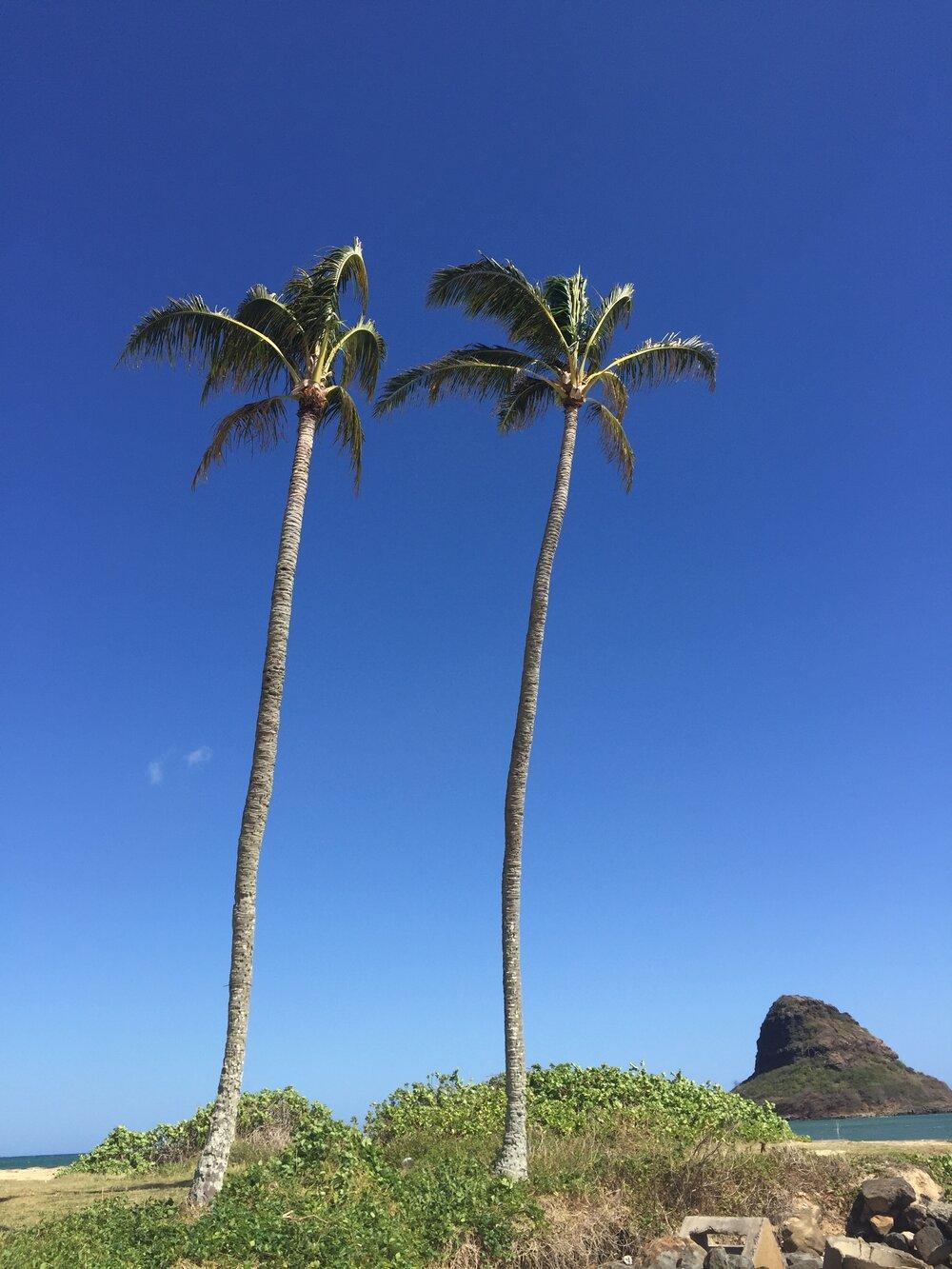 June 23-28: Costa Rica Retreat