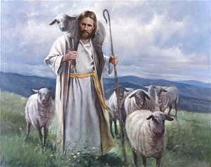 Sheep and Good Shepherd