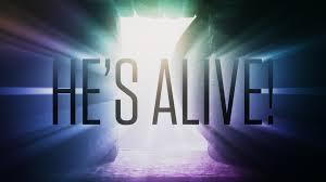 He's alive!.jpg