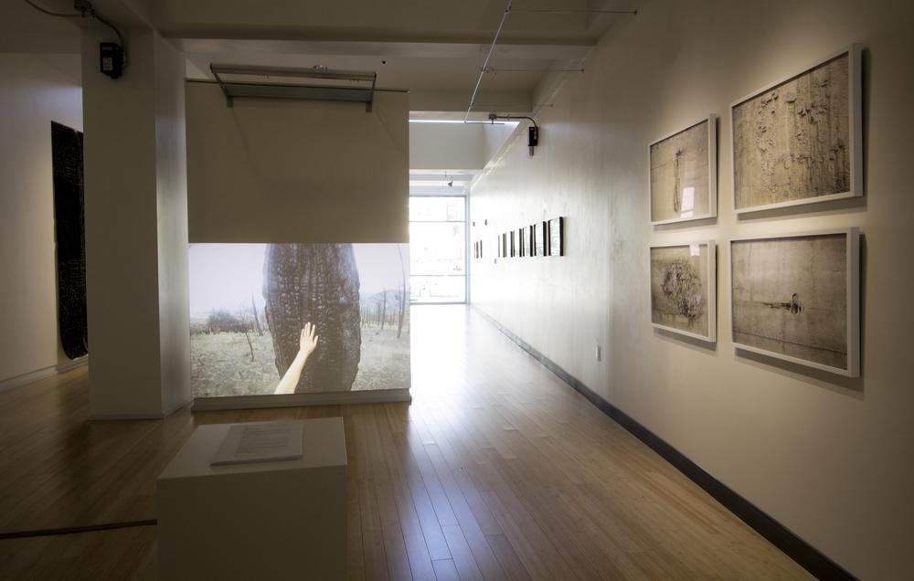 Edge Effects Installation View, 2015 Cafritz Art Center, Montgomery College, MD